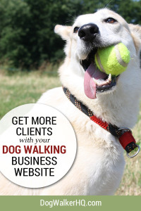 Dog Walking Service Website