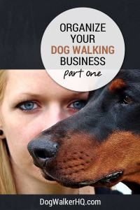 Get Organized for Your Dog Walking Business